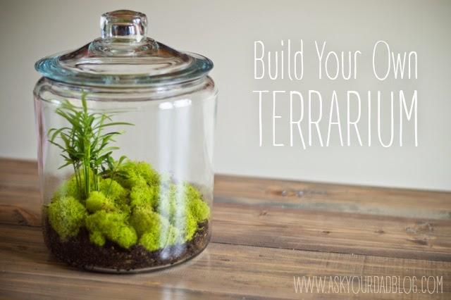 It Was Raining Outside So We Built A Terrarium Ask Your Dad Blog
