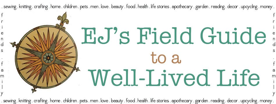 EJ's Field Guide to a Well-Lived Life