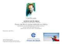 Curso especializado en Flores de Bach para Niños