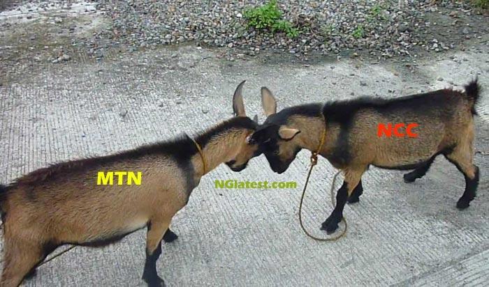"""MTN Must Pay 1 Trillion Naira Fine"""