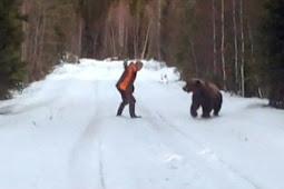 Selamatkan Istri, Suami Hadapi Beruang Besar