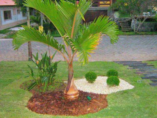 Decoração Jardins Pequenos e Simples  Solteiras Noivas Casadas