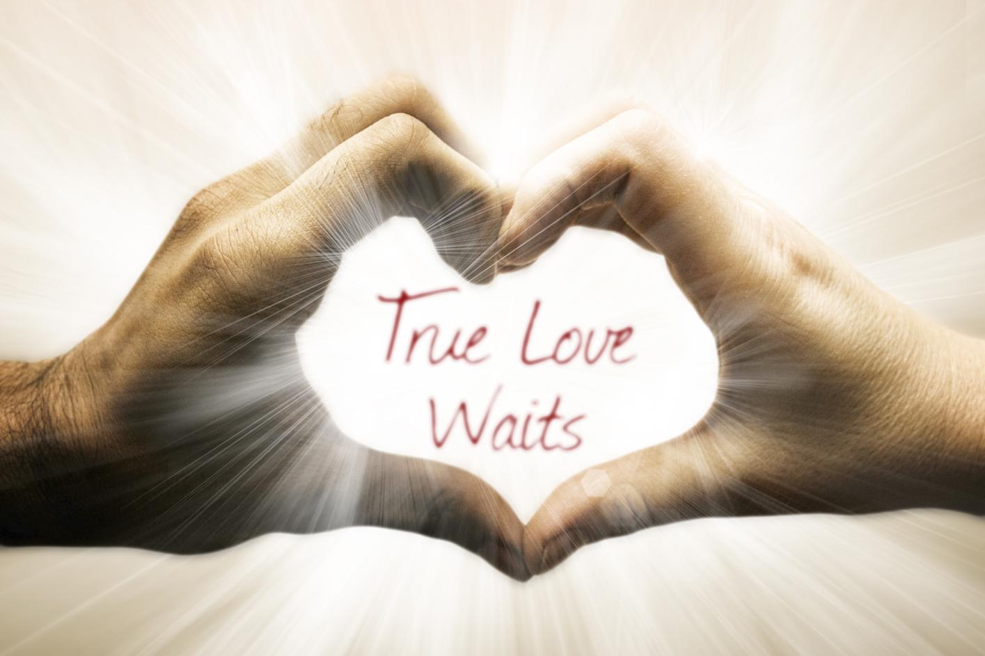 essay on true love waits