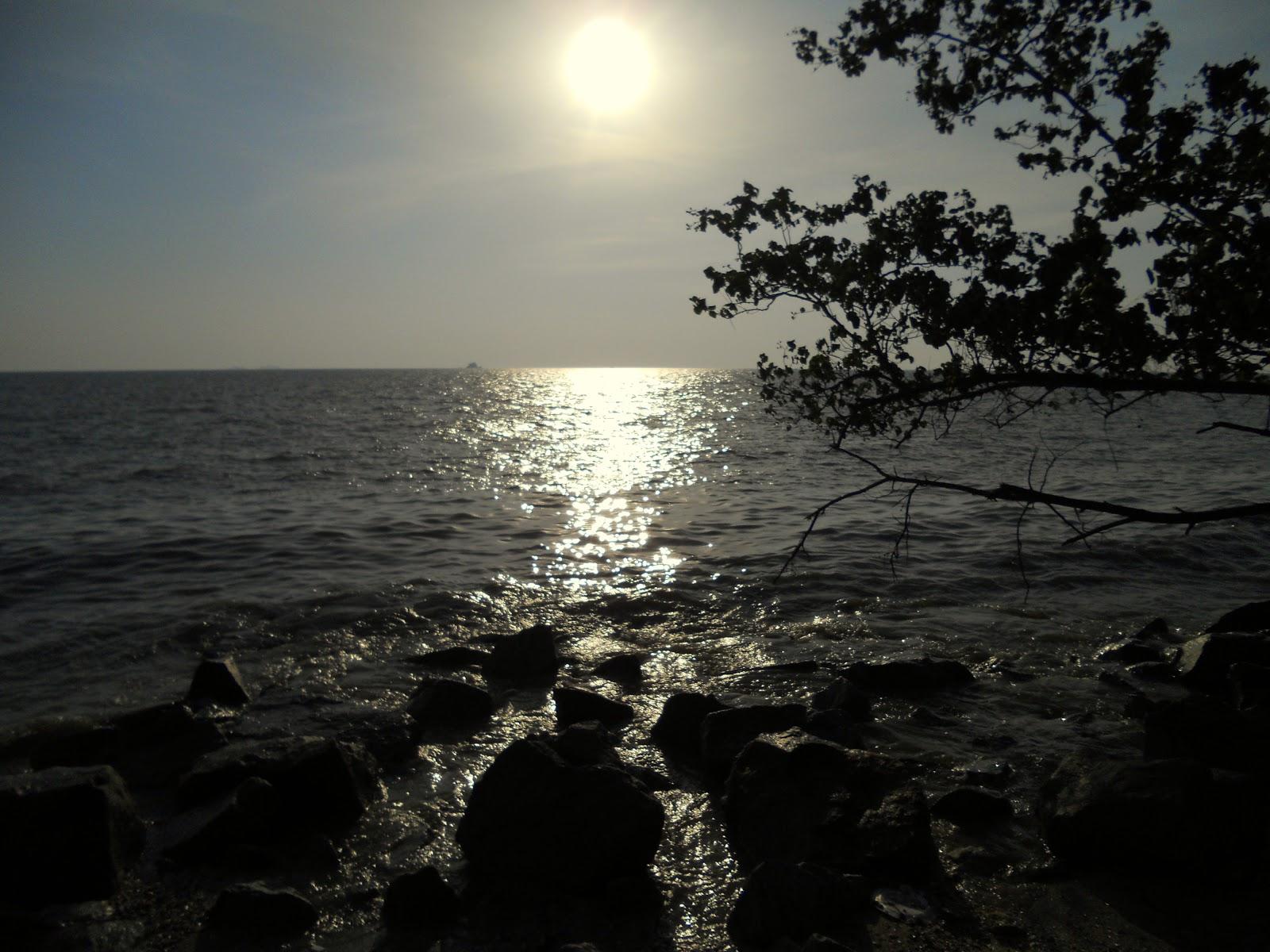 Gambar Pemandangan Bawah Laut Pantai Kamistad Celebrity Pictures