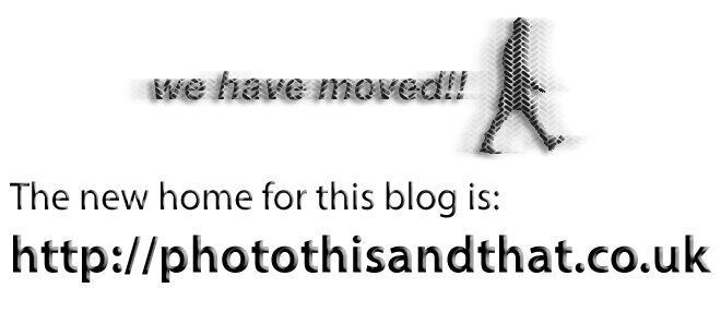 This Blog Has Moved