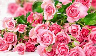 Permalink to Mengkonsumsi Bunga Berkhasiat Untuk Kesehatan