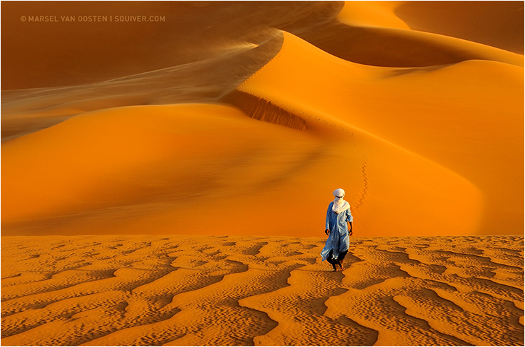Emerging Photographers, Best Photo of the Day in Emphoka by Marsel van Oosten