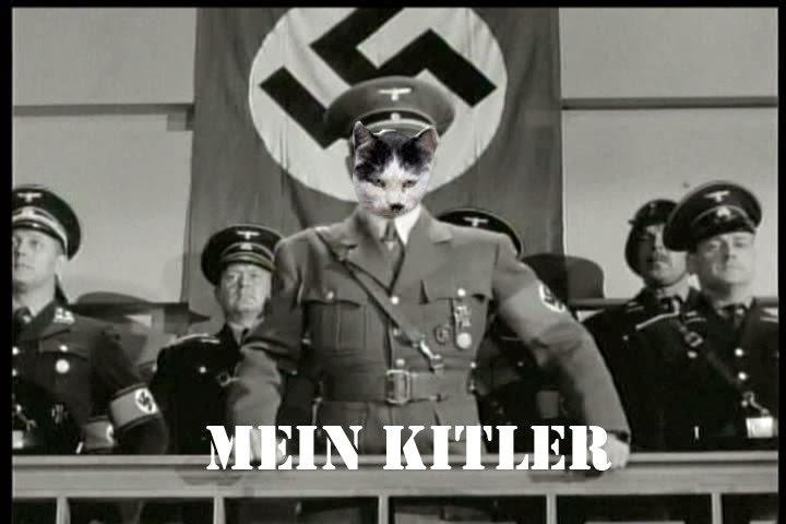Hitler Giving Speech