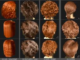 Hair Geometry Synthesis
