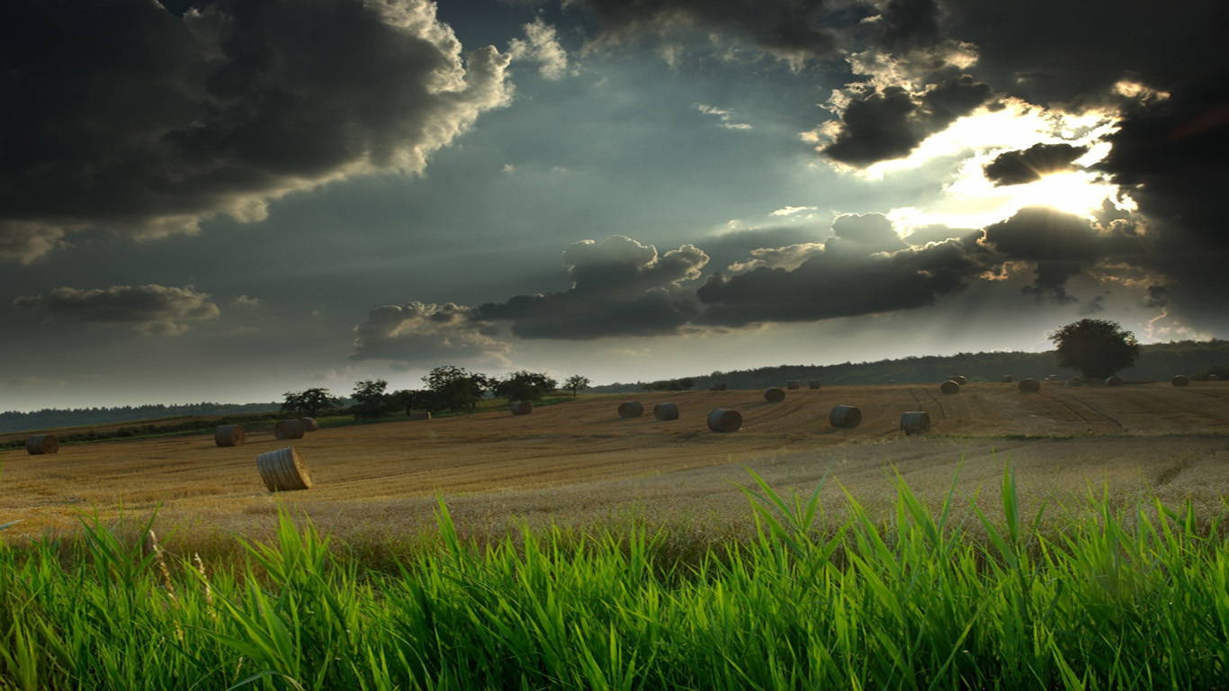 Glorious Wallpapers 2012 Latest Nature