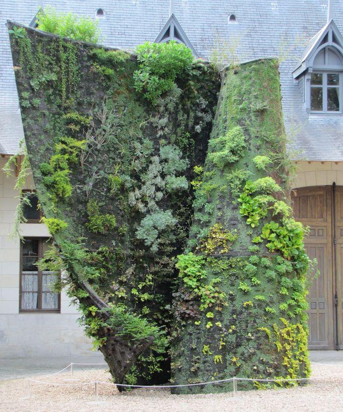 Fitorremediaci n del aire interior jardines verticales for Plantas usadas para jardines verticales
