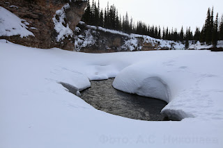 Река Щучья - левый приток Сулы. Ненецкий автономный округ. Природа НАО.