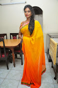 Jayavani glam pics in saree-thumbnail-17