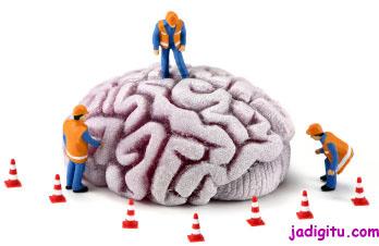Hal Yang Harus Dihindari Demi Kesehatan Otak [ www.BlogApaAja.com ]