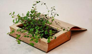 Plantas en libros antiguos.