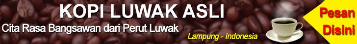 Kopi Luwak Lampung