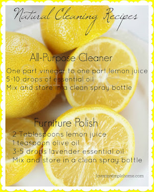 FREE ALL NATURAL CLEANING RECIPE PRINTABLES