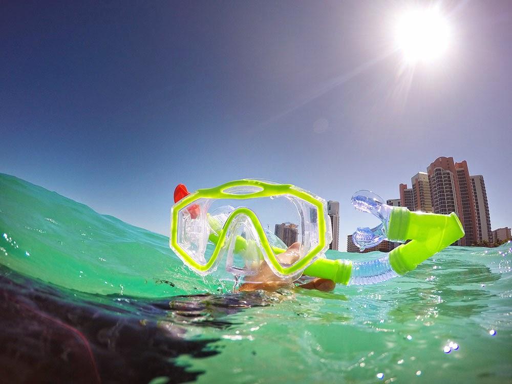 Miami Snorkeling