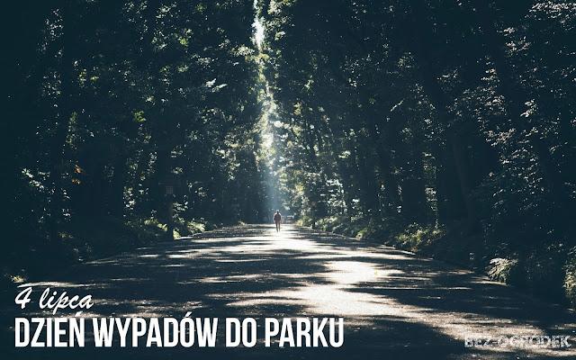 Dzień Wypadów do Parku