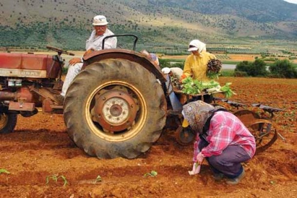 «Μπόνους» στον αγροτικό τομέα για την αντιμετώπιση της κρίσης