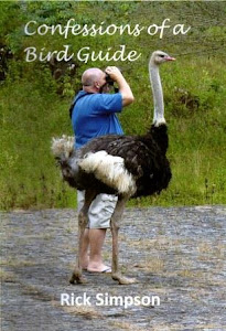 Confessions of a Bird Guide
