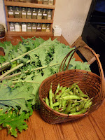 Kale and green beans on the kitchen table