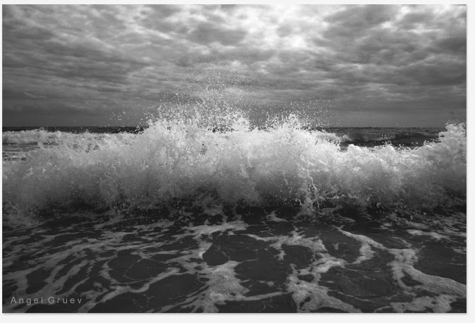 Fine Art photograph,Black and white picture,Buy original photograph,Print picture,Free shipping