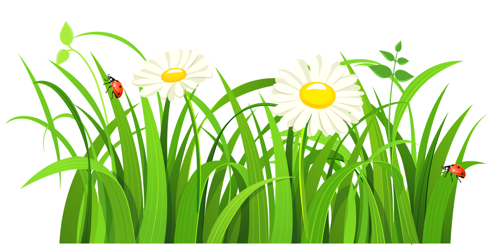 catatan liza label border bunga border flower bunga cantik clip art