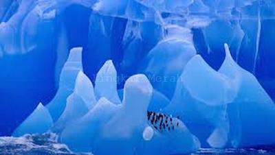 Benua Antartika