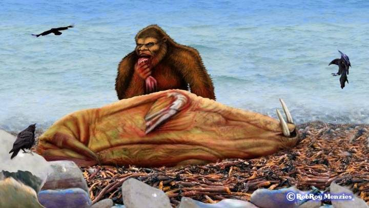 Is This What the Bigfoot Feeding on the Walrus Looked Like?