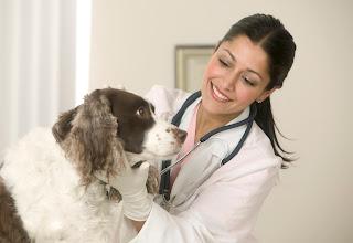 Tài liệu chăn nuôi thú y
