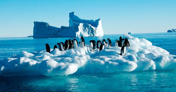 Keputusan Pertandingan Antartika Lestari 2013