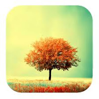 Awesome Land Pro LiveWallpaper v2.9.5 APK