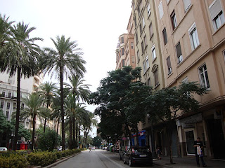 Beautiful palm trees photo in Valencia street   - Spain