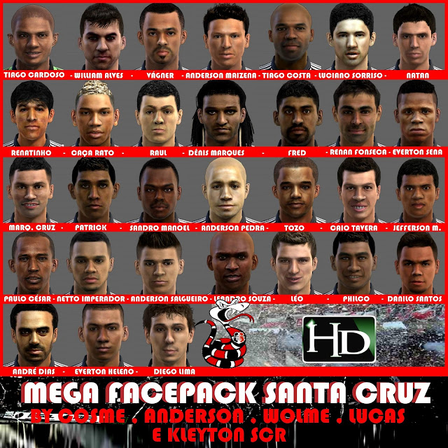 Santa Cruz Facepack - PES 2013