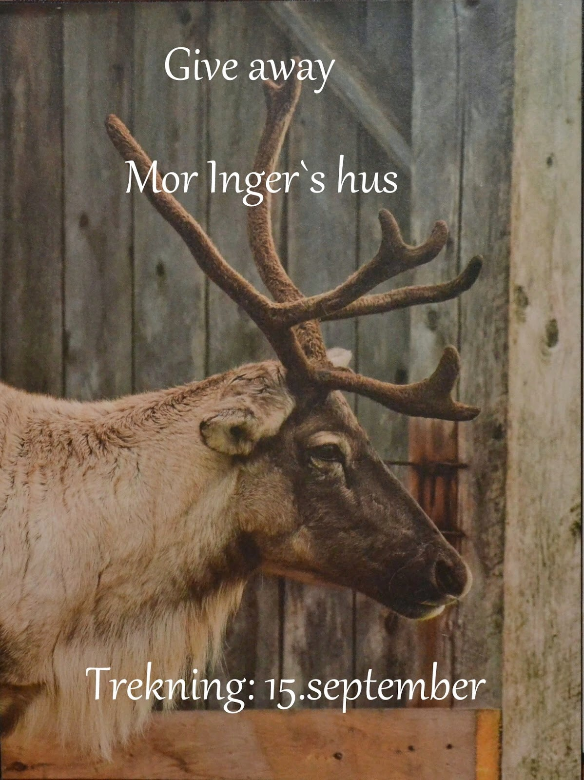 Give away Mor Inger's hus