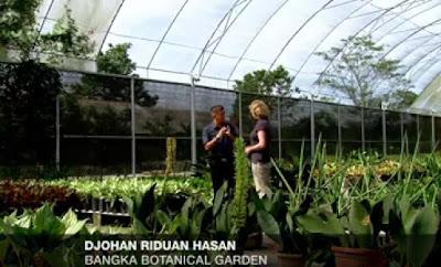 Bangka Botanical Garden - Project Impian di Pulau Bangka Belitung Indonesia