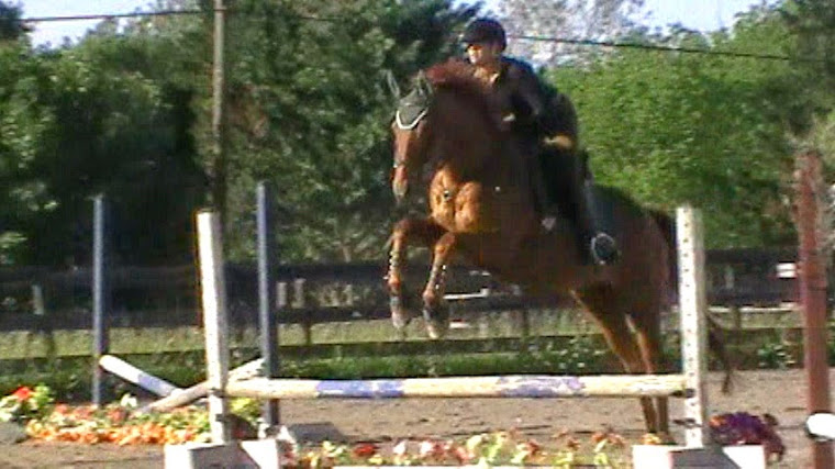 Miss Jean and PrimeTime schooling over low jumps.