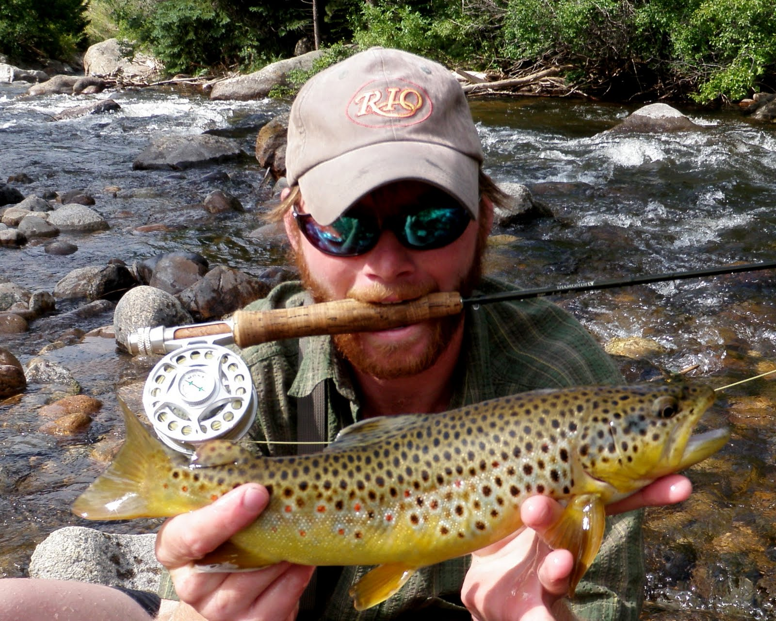 Colorado fly fishing reports boulder creek directory for Colorado fishing report