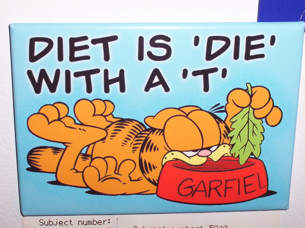 diet+is+die+with+T+garfield+cute+wallpaper.jpg