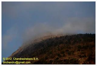ವೈಶಾಖ Photo by Chandrashekara BH