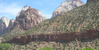 Zion National Park beauty