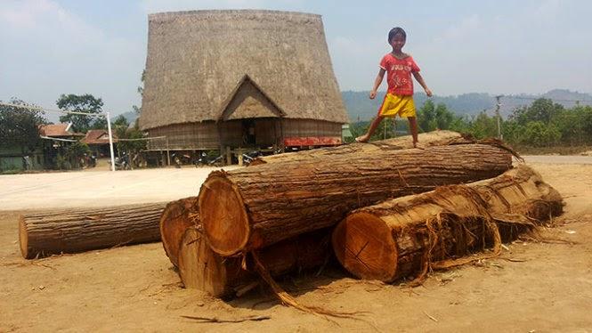 Gia Lai: Cả làng vây bắt lâm tặc