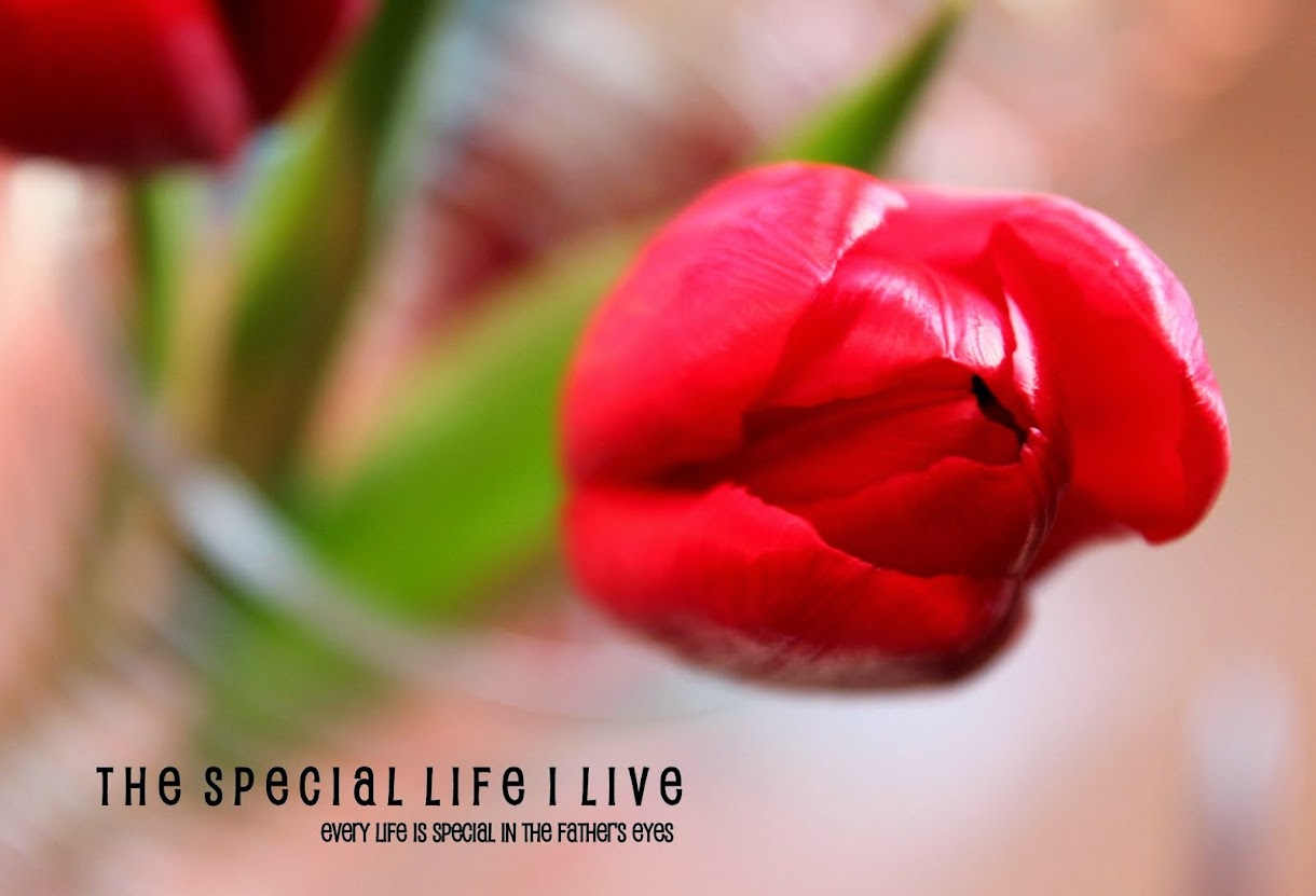 The Special Life I Live