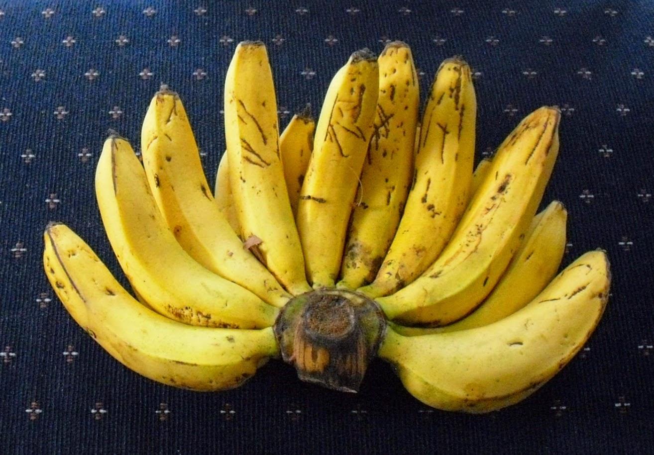 Resep membuat sale pisang gurih dan renyah