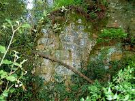 Restes de muralles cobertes totalment per la vegetació
