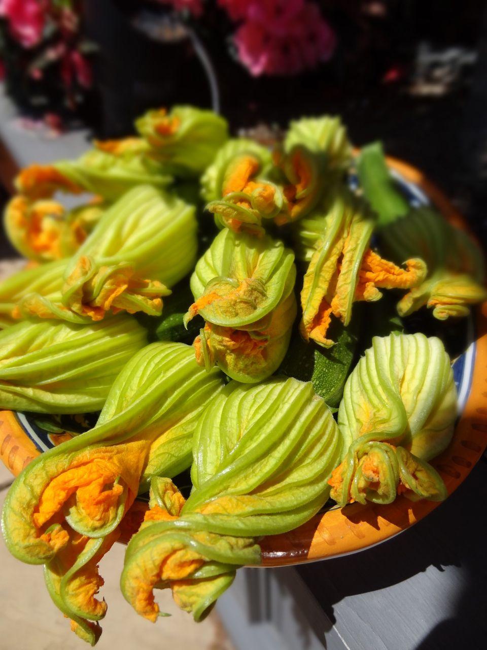 Scrumpdillyicious: Fried Ricotta Stuffed Zucchini Flowers