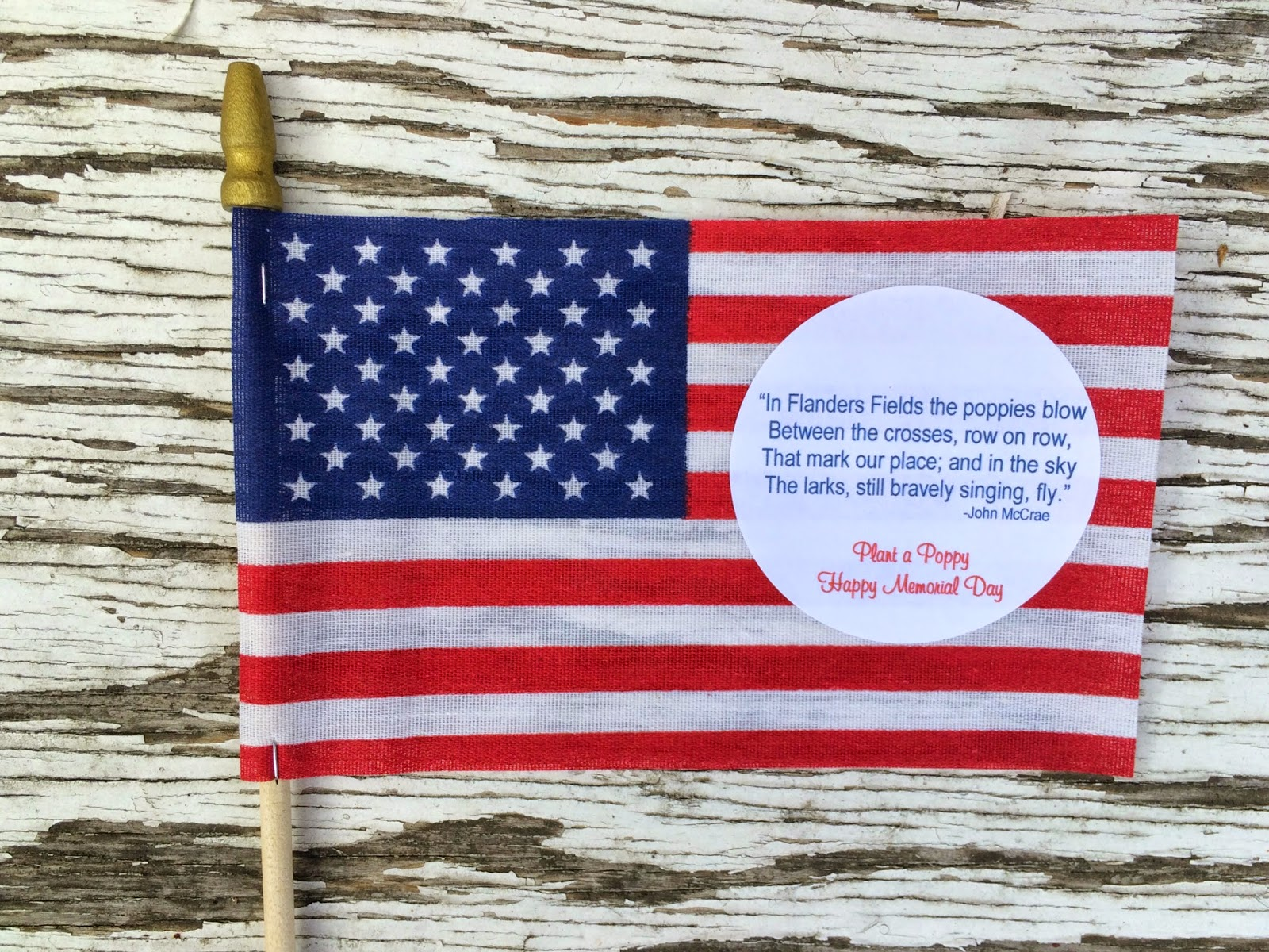 Jac o lyn murphy memorial day favors poignant party poppies who was instrumental in popularizing them on memorial day publicscrutiny Gallery