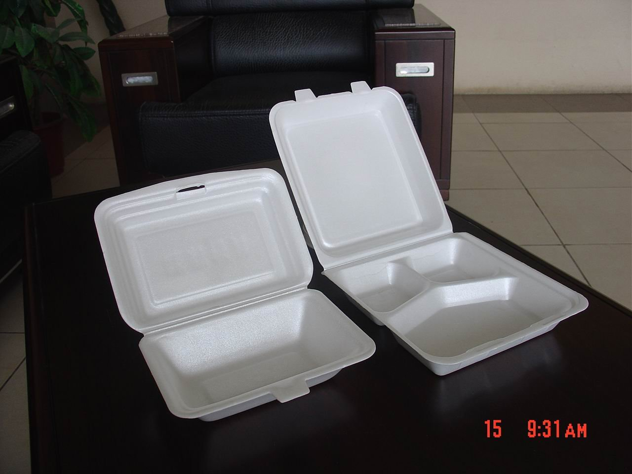 Styrofoam Plates & The Travels of BlueMenpachi: STYROFOAM: What is it? How is it made ...