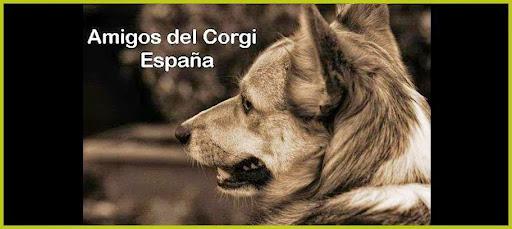Amigos del Corgi España